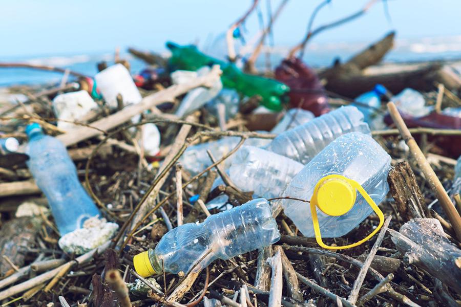bài toán nhựa của toàn cầu